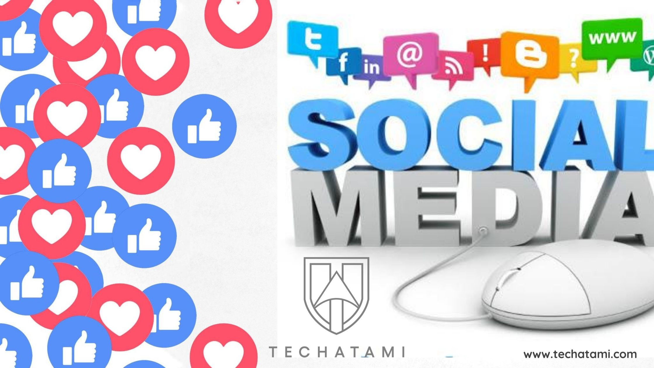 How do social media company can impact on your business?